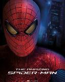 Amazing Spider Man- Face Plakat