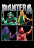 Pantera - Band Frames Plakater