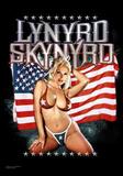 Lynyrd Skynyrd - American Flag Plakát