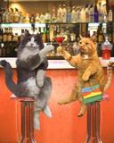 Cocktails - Katzen Kunstdrucke