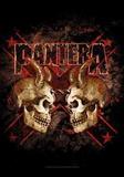 Pantera - Double Skull Photo