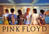 Pink Floyd–malby na zádech Plakát