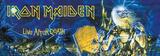 Iron Maiden - Life After Death Door Flag Prints