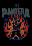 Pantera - Guitar Posters