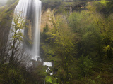 Silver Falls from Gold and Silver Falls State Park, Near Coos Bay, Oregon, USA Photographic Print by David Cobb
