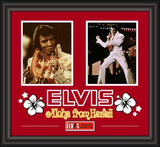 "Elvis Presley ""Aloha From Hawaii"" framed presentation Framed Memorabilia"