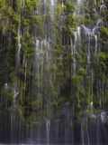 Mossbrae Falls in Northern California, USA Photographic Print by David Cobb