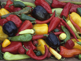 Heirloom Sweet Pepper Harvest Photographic Print by David Cavagnaro