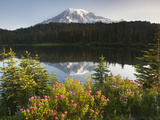 Mount Rainier with its Reflection in Reflection Lake at Sunrise, Mount Rainier National Park Photographic Print by David Cobb