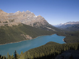 Peyto Lake with its Turquoise Color from Finely Ground Rock Called Glacier Flour Photographic Print by Hal Beral