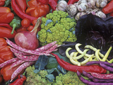 Colorful Italian Heirloom Vegetable and Fruit Harvest, Seed Savers Exchange Photographic Print by David Cavagnaro