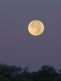 Full Moon Photographic Print by Glenn Bartley