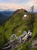 Goat Rocks Wilderness with a View of Mt. Adams from Goat Ridge, Washington, USA Photographic Print by David Cobb