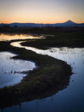 A Portion of the Denman Wildlife Area, Oregon, USA Photographic Print by Sean Bagshaw