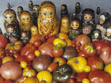 Tomato Variety from Russia with Russian Dolls Lámina fotográfica por David Cavagnaro