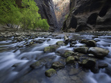 The Virgin River and Virgin River Canyon in Zion National Park, Utah Photographic Print by David Cobb