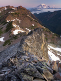 View of Mt. Adams from the Goat Rocks Wilderness, Washington, USA Photographic Print by David Cobb