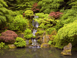 Heavenly Falls in Summer in the Japanese Garden, Portland, Oregon, USA Photographic Print by David Cobb