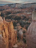 Bryce Canyon National Park, Utah, USA Photographic Print by David Cobb