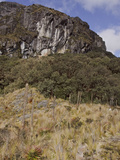 A Scenic View of Cajas National Park Near Cuenca, Ecuador Photographic Print by Glenn Bartley