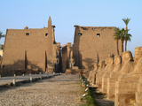 Avenue of Sphinxes, Luxor Temple, Luxor, Egypt Photographic Print by Gary Cook