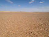 Flat Gravel Plain of the Hamadat Al-Hamrah, Sahara Desert, Libya Photographic Print by Gary Cook