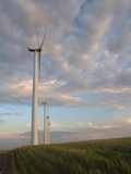 Wind Power Alternative Energy Turbines, Oregon, USA Photographic Print by David Cobb