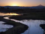 The Denman Wildlife Area at Dusk, Oregon, USA Photographic Print by Sean Bagshaw