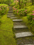 Azaleas and Stairs in the Natural Garden, Japanese Garden, Portland, Oregon, USA Photographic Print by David Cobb