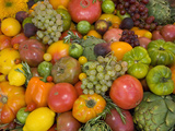 The Tomato Festival in Santa Rosa, California, Local Fruit and Vegtables Fotografiskt tryck av Gerald & Buff Corsi