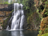 Upper North Falls, Silver Falls State Park, Oregon, USA Photographic Print by Ellen Bishop