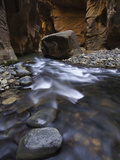 Virgin River Canyon in Zion National Park, Utah, USA Photographic Print by David Cobb