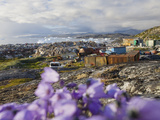 Rubbish Dump, Ilulissatnd with Icebergs Behind from the Sermeq Kujullaq Photographic Print by Ashley Cooper