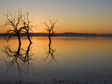 Salton Sea Sunset, Southern California, USA Photographic Print by John Cornell