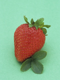 Ripe Strawberry Fruit and Leaves Photographic Print by Wally Eberhart