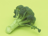 Broccoli (Brassica Oleracea) Photographic Print by Wally Eberhart