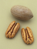 Pecans Photographic Print by Wally Eberhart