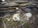 Inuit Skulls and Bones in a Stone Chambered Cairn in Ilulissat Photographic Print by Ashley Cooper