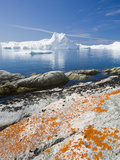 The Jacobshavn Ice Fjord in Ilulissat Seen from a Mossy Bog on Greenland Photographic Print by Ashley Cooper
