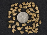 Placer Gold Nuggets Surrounding a Dime Photographic Print by Jeff Daly