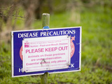 A Foot-And-Mouth Disease Warning Sign on a Farm Photographic Print by Ashley Cooper