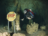 Scuba Diver in Car Wash Cenote, Aktun Ha, Tulum, Yucatan Peninsula, Mexico, Model Released Photographic Print by Reinhard Dirscherl
