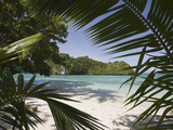 Sandy Beach in Rock Islands, Micronesia, Palau Photographic Print by Reinhard Dirscherl