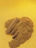 Cinnamon Sticks and Powder (Cinnamomum Verum) Photographic Print by Wally Eberhart