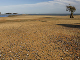 Dry Lake Bed of Lake Marion in the Santee Cooper Lake System During the Fall Drought of 2008 Photographic Print by Marc Epstein
