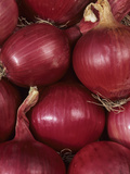 A Harvest of Mars Variety Red Onion Provides Vitamin C and Fiber Photographic Print by Wally Eberhart