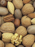 Mixed Nuts: Almond, Hazel, Pecan, and Walnut Photographic Print by Wally Eberhart
