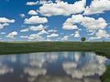 Fair Weather Cumulus Clouds Reflected in a Farm Pond in Nebraska, USA Photographic Print by Charles Doswell