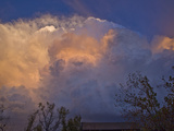 Supercell Storm East of Norman, Oklahoma, USA Near Sunset Photographic Print by Charles Doswell