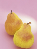 Bartlett Pears (Pyrus Communis) Photographic Print by Wally Eberhart